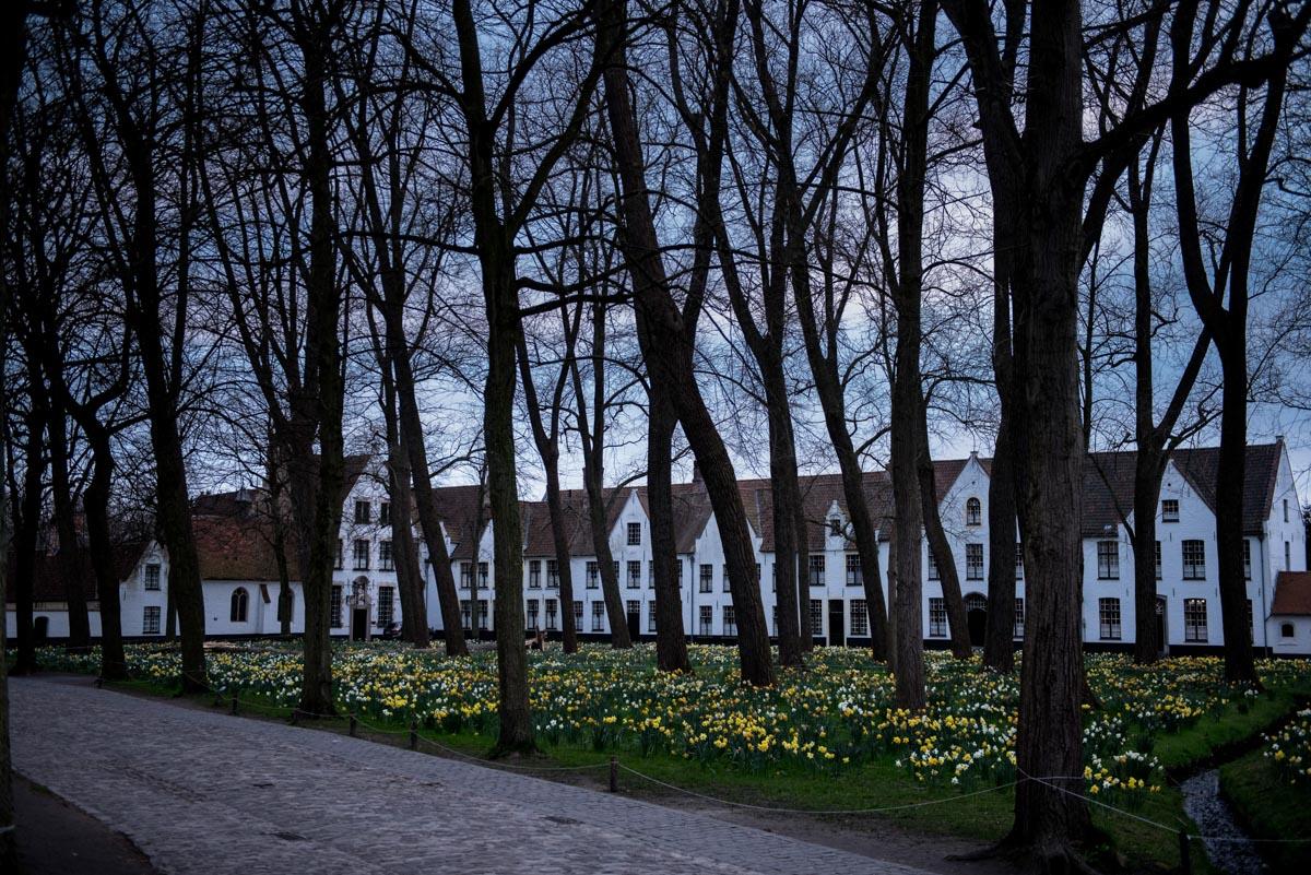 Bruges (61)