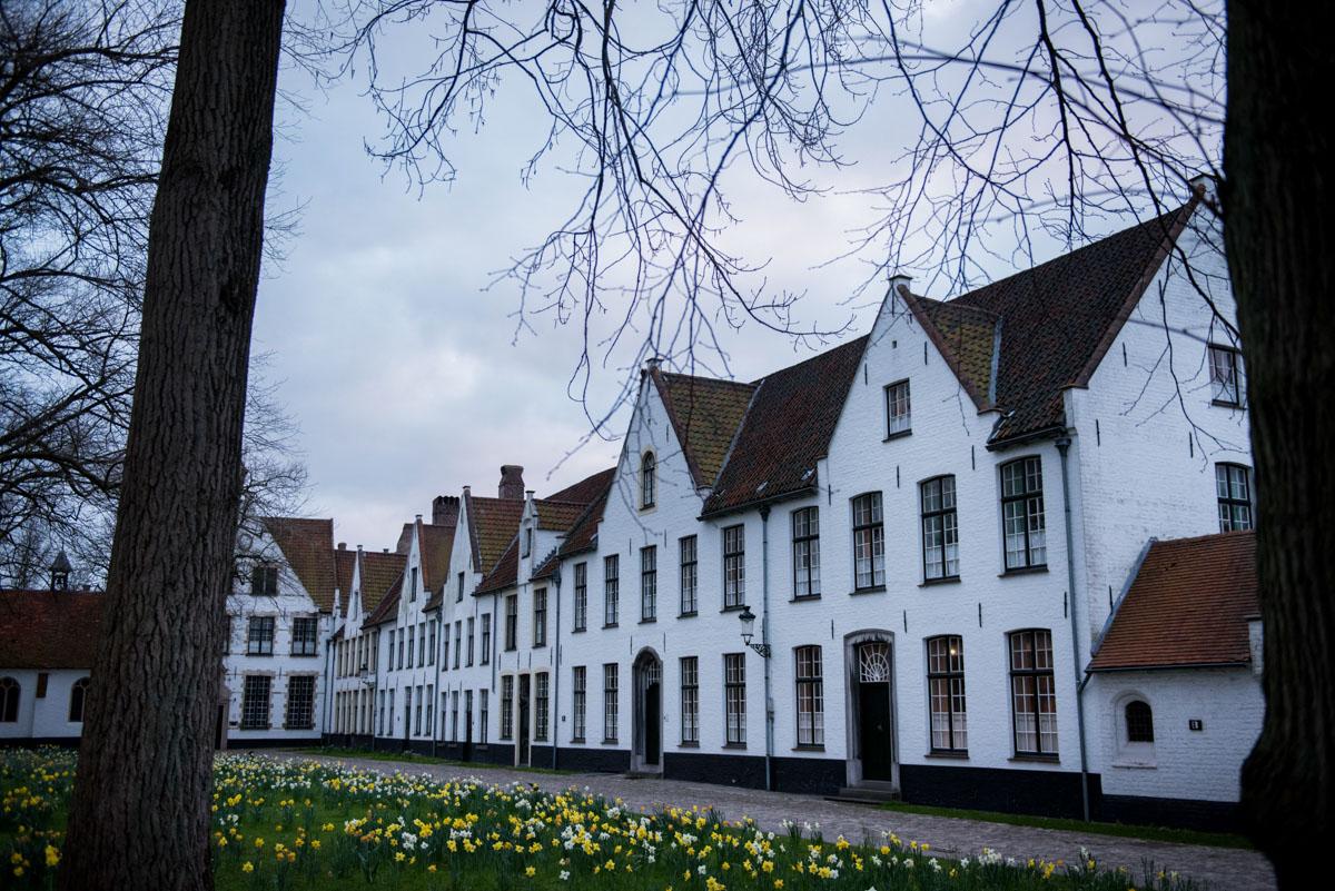 Bruges (62)
