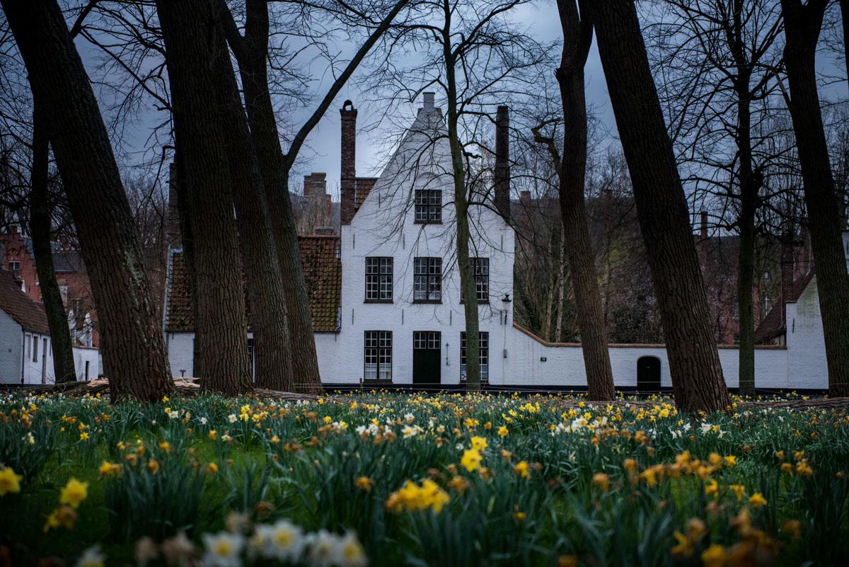 Bruges (63)
